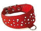 Croci Chamois Halsband Windhund mit Kristallen, 31cm, rot