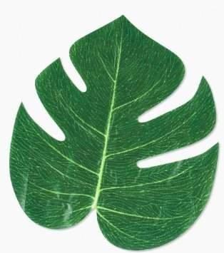 (Valley Mall Tropische Blätter–Luau Party Dekorationen (48, Grün) von Valley Mall)