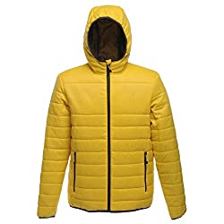 Regatta Herren Acadia Warmloft Touch Jacket Jacke, Bright Yellow, X-Large (Size:XL)