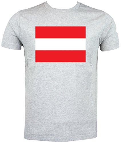 Flagge Österreich T Shirt, grau - Größe: 5-6 Jahre kinder