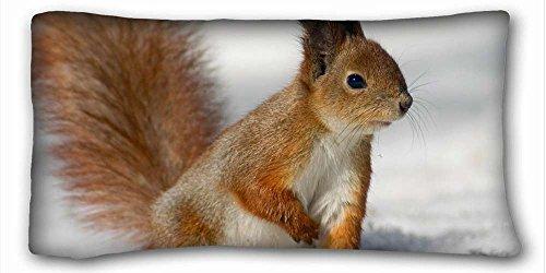 Soft Kissen Case Cover (Tiere Schmetterling Makro Baum) Kissenbezüge Betten Zubehör Größe 50,8x 91,4cm geeignet für Extralang twin-bed pc-red-15852 -