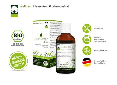 Wellnest Leber-Kraft Daily Bio Konzentrat 100ml mit Mariendistel, Kurkuma, Löwenzahn, Schafgarbe und Odermennig Test