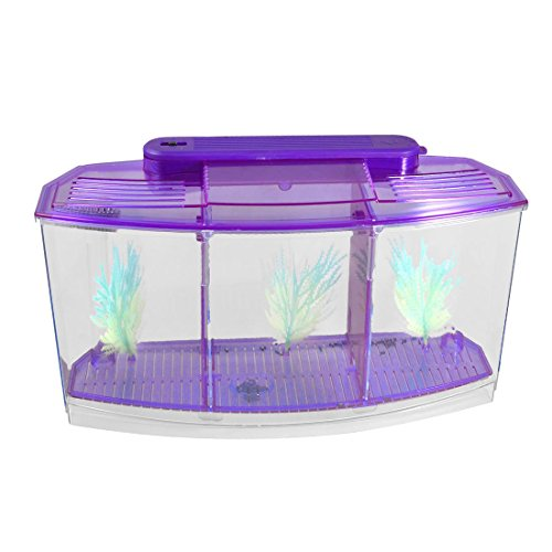 TOOGOOR Acuario peces escritorio mini lampara LED