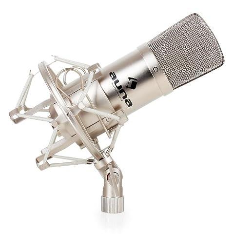 Auna CM001S Profi-Kondensatormikrofon Studio Gesang-Mikrofon (XLR, Nierencharakteristik, inkl. Mikrofonspinne und Schutztasche) silber