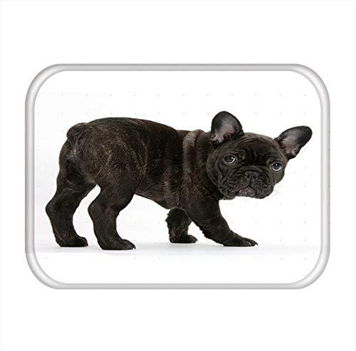 shensc Fußmatte Weihnachten Hund Lustiger Mops Französische Bulldogge Küche Wohnzimmer Teppich Wasserdicht Rutschfester Badteppich 40x60cm (Küche-teppich Französische)