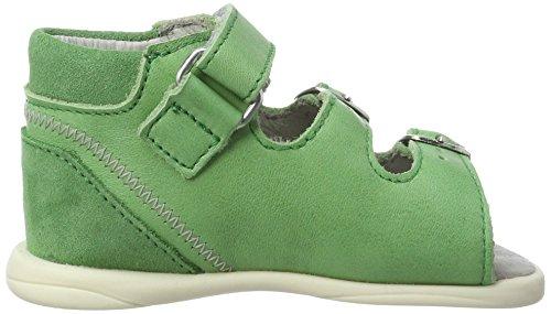 Däumling Bo, Chaussures Marche Mixte Bébé Grün (Fortuna gras55)