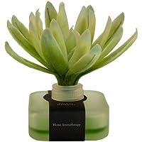 Breathe 1227 Bloem Diffusor - Green Tea Veganer Raumduft preisvergleich bei billige-tabletten.eu