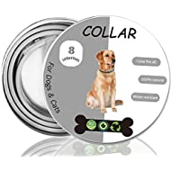 Cypin Flea and Tick Collar for Dogs, 8 Months Effective Protection Waterproof Dog Anti Flea Collar, adjustable length 25 inches Fits for Small Medium Large Pets