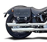 Satteltasche Vegas 17 Liter Softail ab 1984-, Sportster ab 1995 und Dyna 1991-2017 Harley Davidson - OHNE Halter - links oder rechts passend Buffalo Bag.