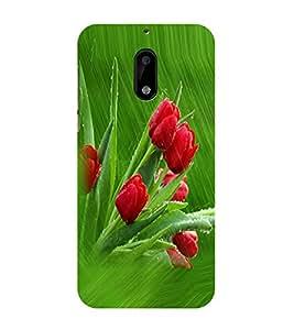 PrintVisa Designer Back Case Cover for Nokia 6 (Red Tulips)