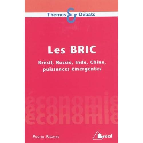 Les BRIC : Brésil, Russie, Inde, Chine, les puissances économiques du XXIe siècle