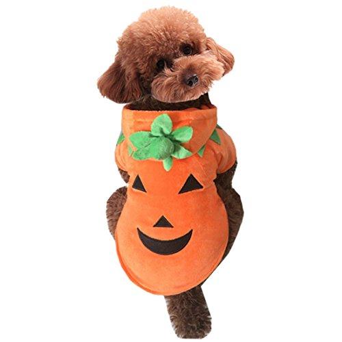 QIYUN.Z Haustier Hund Kostüm Halloween Kürbis Weichen Warmen Kapuzen Welpen Cosplay Outfit (Kostüm Hund Halten Kürbis)