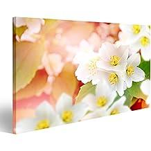 cuadro cuadros paisaje de primavera con delicadas flores de jazmn flores blancas impresin sobre lienzo