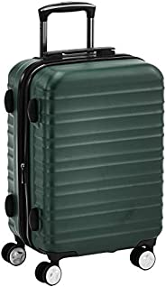 AmazonBasics 20-Inch Carry-on, Green
