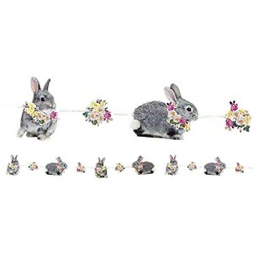 Wirklich Bunny Bunting - 3m (Kostüme Kolumbien)
