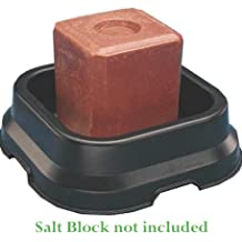 Industrias Fortex cacerola para 50# sal bloque negro 50Libra–SBP-10