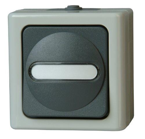 Kopp 561456001 Blue Electric Taster beleuchtet -