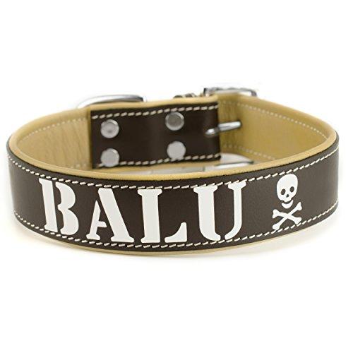 Personalisierte Vier (Echtleder Hundehalsband personalisiert mit Druck Braun Wunschtext individuell (4))