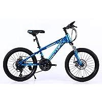 SAFT 21 Speed Mounttain Bike 20inch