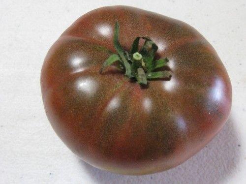 Schwarz Von Tula Tomatensamen, Solanum Lycopersicum, Erbstück, Organisch, Essbare,