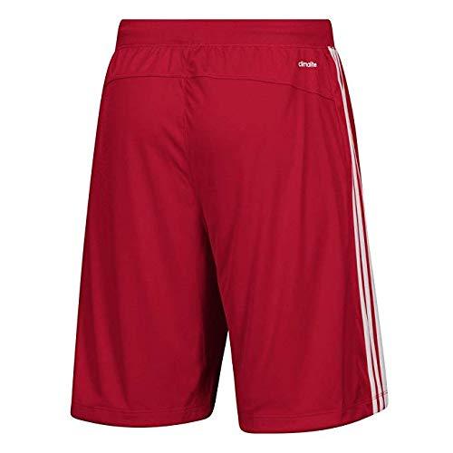8614d0ed06c03 adidas Rutgers University Men's Shorts 3 Stripes Knit Short (Large)
