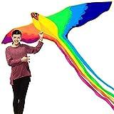 Phénix Cerf-volant avec long queue colorée avec poignée en forme de cerf-volant,...