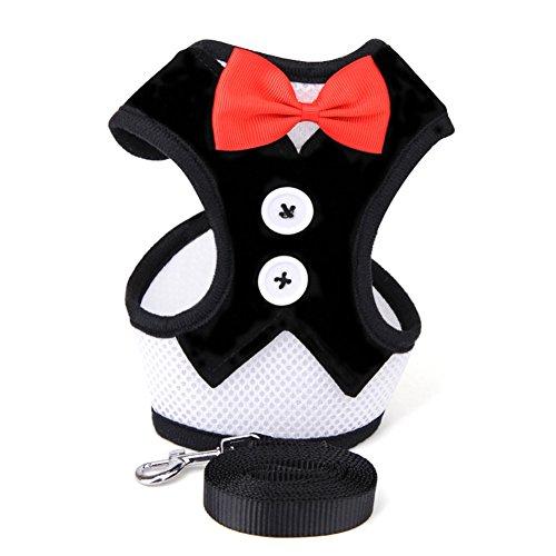 PU Ran Fashion Puppy Pet Fliege für Hunde Gentleman Suit Tuxedo Hundegeschirr Weste mit Leine