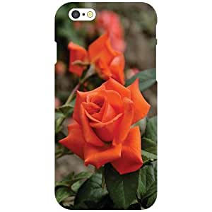 Apple iPhone 6 Back cover (Printland)