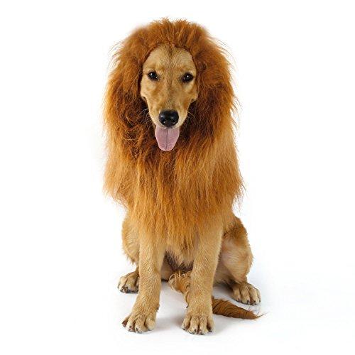 YKS Löwe Mähne Perücke für Hunde Liebenswürdig, PET Hat Katze Hund Kleid bis mit Ohren Funny Katze Hund Little Puppy Kostüm (ohne Ohr)