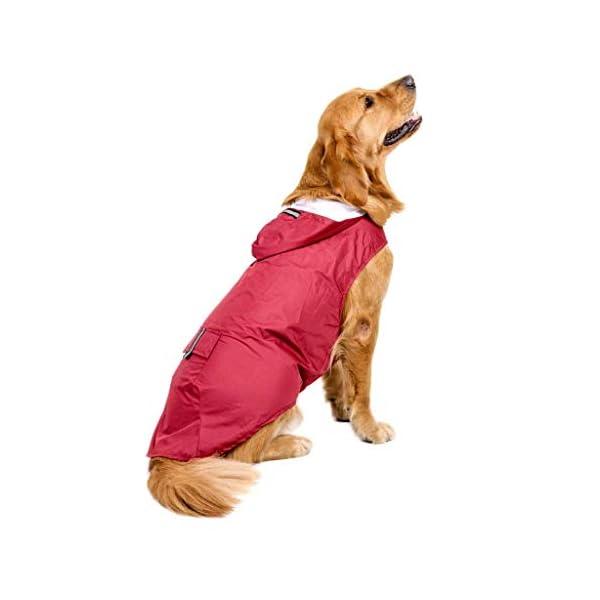 JOYKK Impermeable para Perros con Capucha Poncho Impermeable para Lluvia Impermeable Ropa de Lluvia Ropa Reflectante… 5