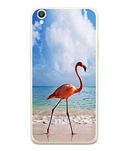 PrintVisa Walking Bird High Gloss Designer Back Case Cover for Oppo A37