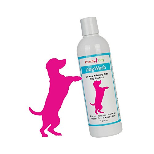 dogwash-natural-oatmeal-pet-shampoo-effectively-soothes-irritations-moisturizes-and-heals-skin-repai