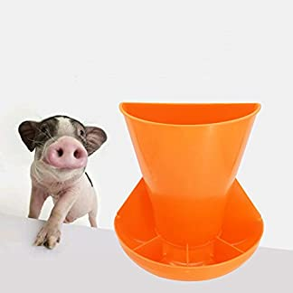 Farm & Ranch The pig trough Pig equipment instrument with thick wall hanging combined piglets feeding trough obstetric table feed trough 411tc7B9rZL