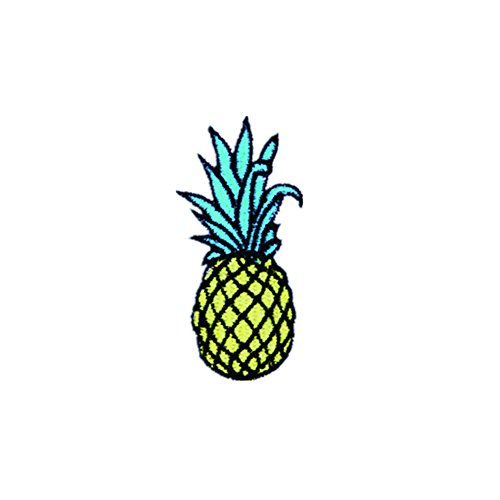 20X Toruiwa mini Patches Bestickte Aufnäher Flicken Zum Aufbügeln Nähen Patch Sticker Applique Badge für Kleid Hut Schuhe Jeans DIY Kostüm Schmücken (Ananas, 7.1 * 2.9cm)