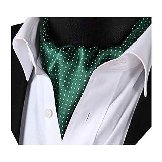 BIYINI Men's Polka Dot Ascot Jacquard Woven Cravat Tie Green/White