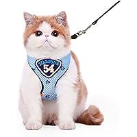 CS Correa de malla de pecho Correa de tracción de gato Correa de pecho de mascota Cuerda especial de gato ( Color : Blue , Size : M chest 24-50Cm )