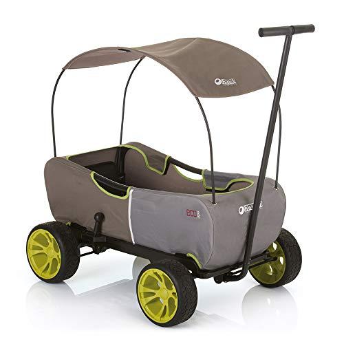 411uD789IkL - Hauck - Carro Eco móvil para niños de 2 - 6 años, Color Verde (T93108)