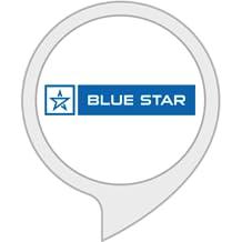 Blue Star Smart AC (WiFi)