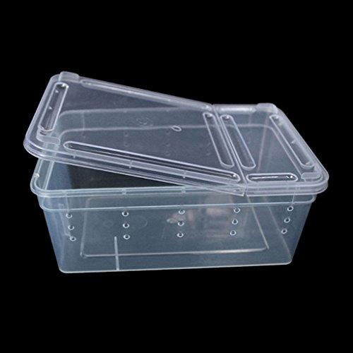 Jiamins-Caja de plástico Transparente Tapa, terrarios...