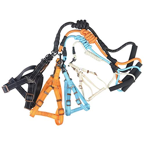 LIUYALE Brustgurt, Nylon Reflektierende Silk Kasten-Rückfahrseil, Hauskatze Traction Seil, for kleine und mittlere Hunde Gehtraining und Wandern Training Laufen (Farbe : Blau, Size : L)