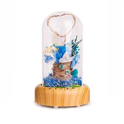 XIAOBIDENG Romantischer Valentinstag LED-Nachtlicht Bluetooth Musik USB-Lampe ewige Blumen Glas Flasche Leuchten Tischleuchten Weihnachtsgeschenk (Kitty Bluetooth Hello)