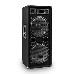 auna pw 2222 enceinte dj pa sono pro haut parleur disco 3 voies subwoofer 2 x 30cm 12 pouces. Black Bedroom Furniture Sets. Home Design Ideas