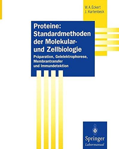 Proteine: Standardmethoden der Molekular- und Zellbiologie: Präparation, Gelelektrophorese, Membrantransfer und Immundetektion (Springer Labormanuale)