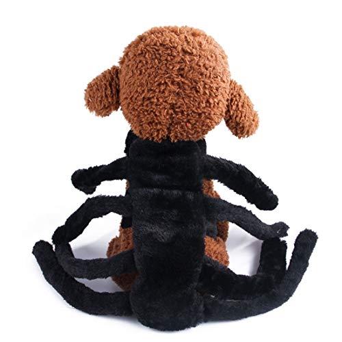 Sixminyo Hundekostüm Halloween Kreative Fledermaus Spinne Flügel Kostüm für Katze Hund Spider (Spider Kostüm Für Den Hunde)