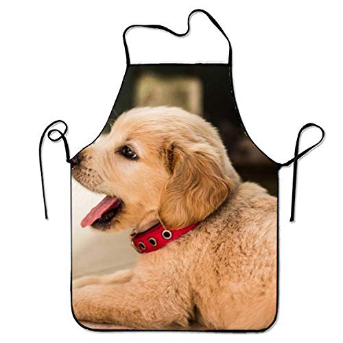 Icndpshorts Cute Doggy Aprons Waterproof Aprons with Adjustable Kitchen Cooking and Bib BBQ Apron