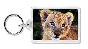 Niedlicher Löwe Cub Foto Schlüsselbund TierstrumpffüllerGeschenk
