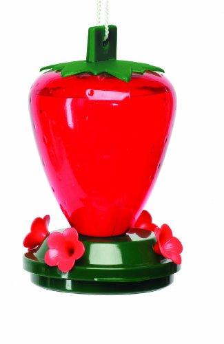 Cherry Valley Kunststoff Strawberry Hummingbird Feeder, 24oz Modell 5555 -