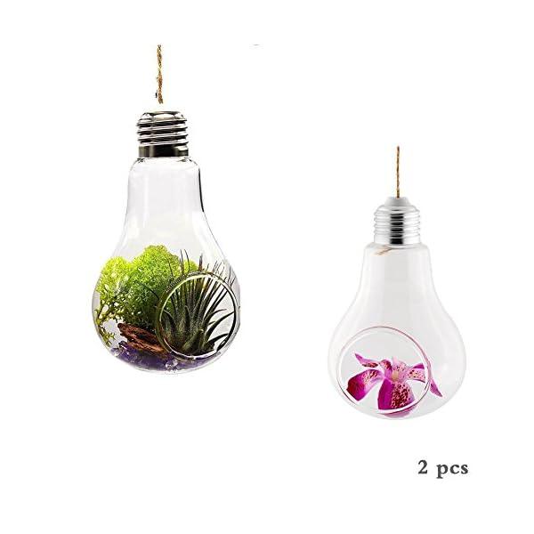 laat creative vase ampoule forme en verre style suspendu verre plante pot pour terrasse jardin. Black Bedroom Furniture Sets. Home Design Ideas