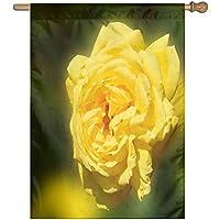 Kotdeqay Vintage Floral Red Roses Flowers Garden Yard Flag Banner for Outside House Flower Pot Double Side Print 28x40 Inch K3