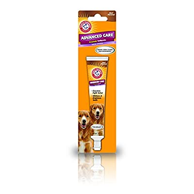 Arm & Hammer Advanced Care Tartar Control Enzymatic Toothpaste - Beef Flavour, 70g from Company Of Animals